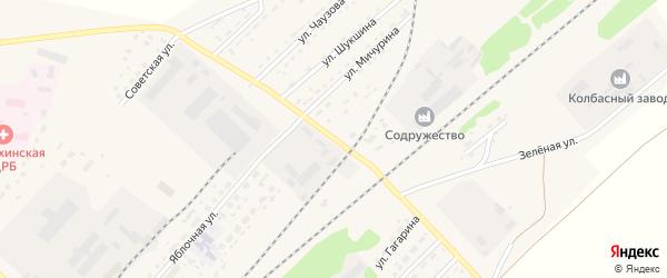 Улица Мичурина на карте села Топчихи с номерами домов