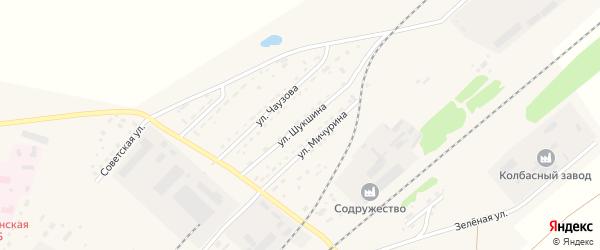 Улица Шукшина на карте села Топчихи с номерами домов