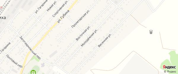 Молодежная улица на карте села Топчихи с номерами домов