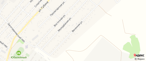 Весенняя улица на карте села Топчихи с номерами домов