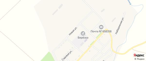 Новая улица на карте села Верха-Камышенки с номерами домов