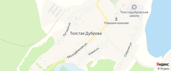 Озерная улица на карте села Толстая Дуброва с номерами домов