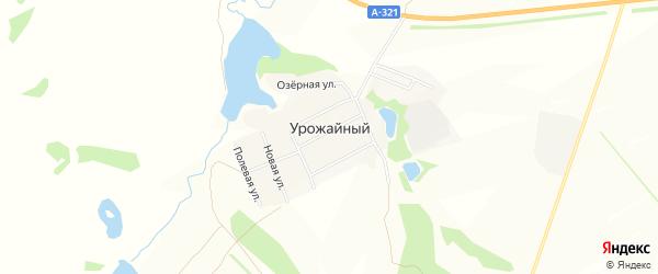 Карта Урожайного поселка в Алтайском крае с улицами и номерами домов