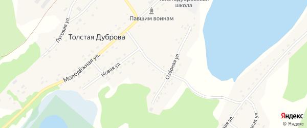 Рабочий переулок на карте села Толстая Дуброва с номерами домов