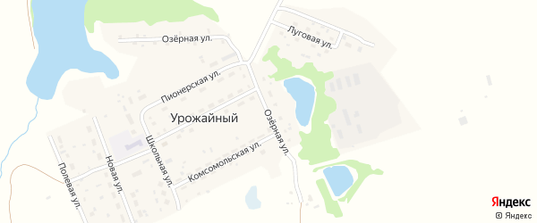 Озерная улица на карте поселка Сдт Шинник-2 с номерами домов