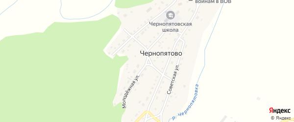Молодежная улица на карте села Чернопятово с номерами домов