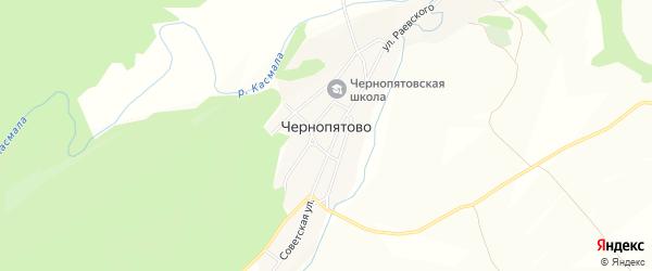 Карта села Чернопятово в Алтайском крае с улицами и номерами домов