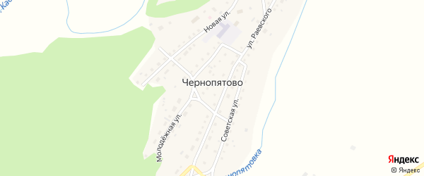 Заречная улица на карте села Чернопятово с номерами домов