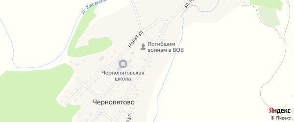 Улица Раевского на карте села Чернопятово с номерами домов