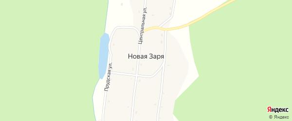 Центральная улица на карте села Новой Зари с номерами домов