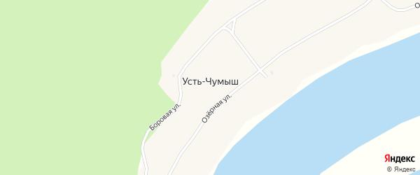 Боровая улица на карте села Усть-Чумыша с номерами домов