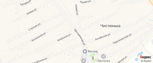 Центральная улица на карте села Чистюньки с номерами домов