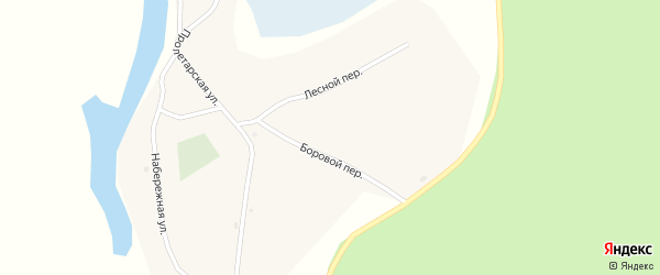 Новая улица на карте села Шишкино с номерами домов