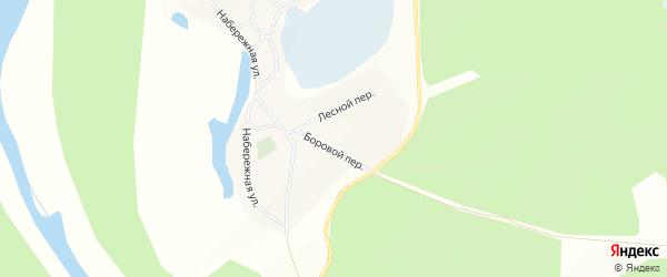 Карта села Шишкино в Алтайском крае с улицами и номерами домов