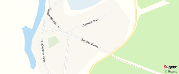 Боровой переулок на карте села Шишкино с номерами домов