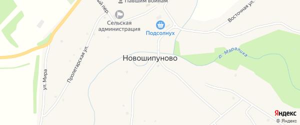 Улица Победы на карте села Новошипуново с номерами домов