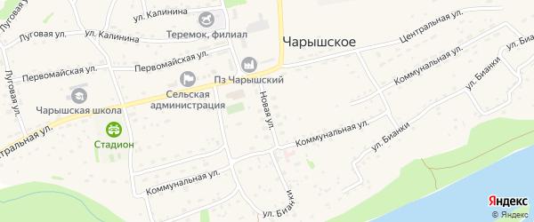 Новая улица на карте Чарышского села с номерами домов
