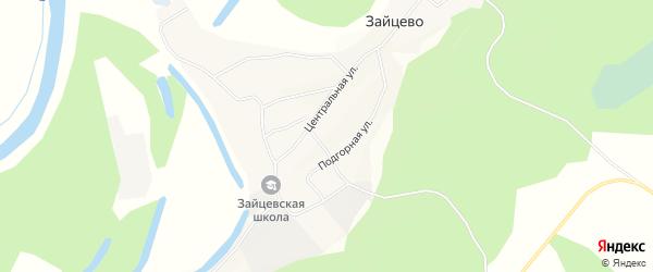 Карта села Зайцево в Алтайском крае с улицами и номерами домов