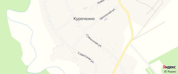 Совхозная улица на карте села Курочкино с номерами домов