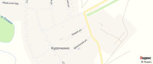Новая улица на карте села Курочкино с номерами домов