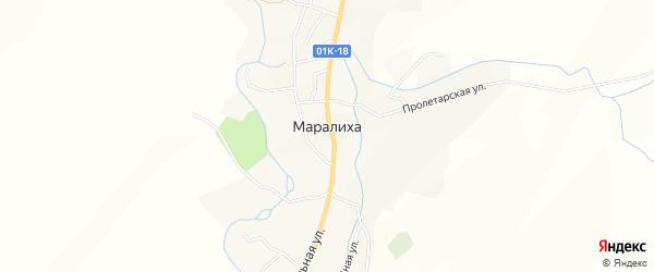 Карта села Маралихи в Алтайском крае с улицами и номерами домов