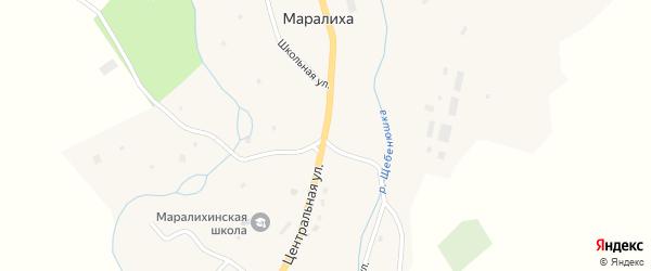 Центральная улица на карте села Маралихи с номерами домов
