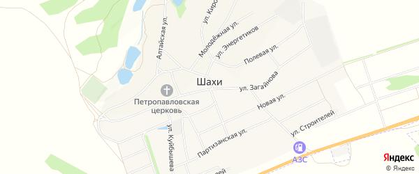 Карта села Шахи в Алтайском крае с улицами и номерами домов