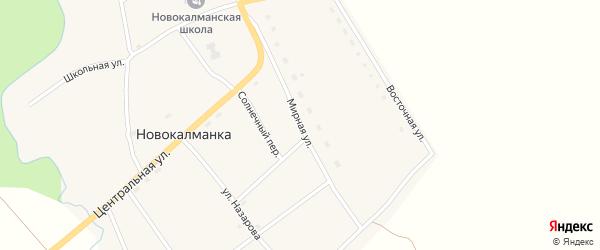 Мирная улица на карте села Новокалманки с номерами домов