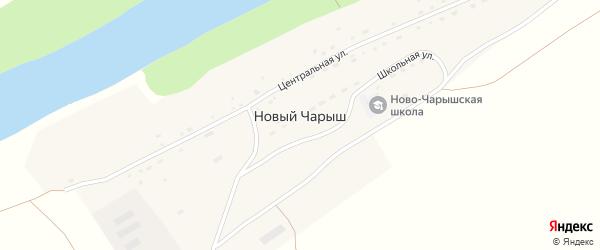 Центральная улица на карте поселка Нового Чарыша с номерами домов