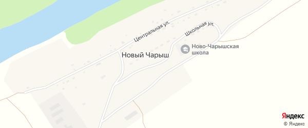 Школьная улица на карте поселка Нового Чарыша с номерами домов