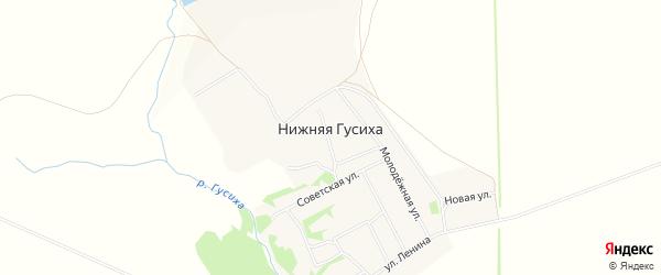 Карта села Нижней Гусихи в Алтайском крае с улицами и номерами домов