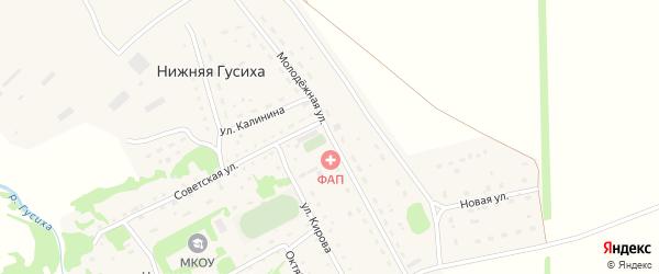 Молодежная улица на карте села Нижней Гусихи с номерами домов
