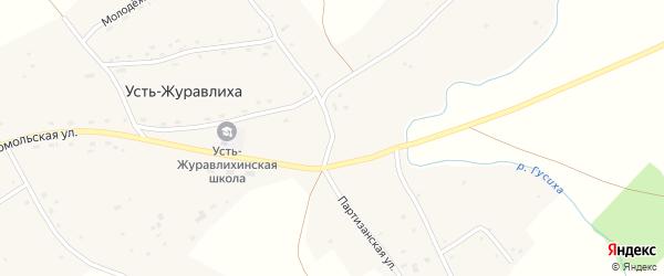 Партизанская улица на карте села Усть-Журавлихи с номерами домов