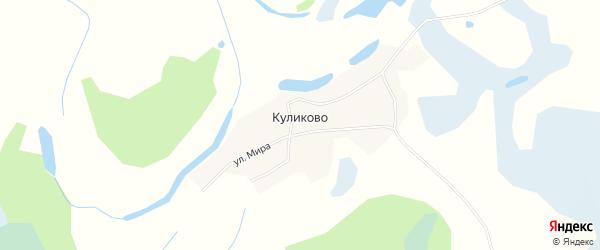 Карта села Куликово в Алтайском крае с улицами и номерами домов