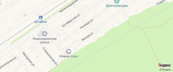 Лесная улица на карте поселка Новые Зори с номерами домов
