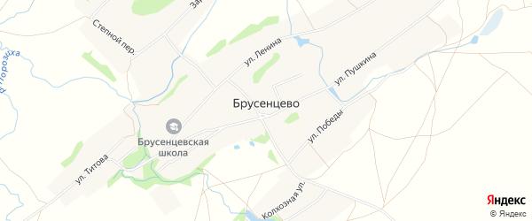 Карта села Брусенцево в Алтайском крае с улицами и номерами домов