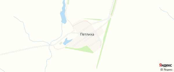 Карта поселка Петлихи в Алтайском крае с улицами и номерами домов