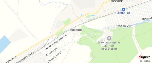 Карта Мохового села в Алтайском крае с улицами и номерами домов