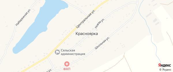 Центральная улица на карте села Красноярки с номерами домов