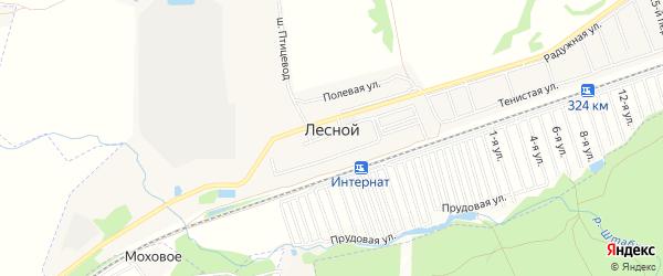 Карта Лесного поселка города Барнаула в Алтайском крае с улицами и номерами домов
