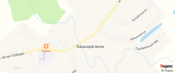 Зелёный переулок на карте села Кашкарагаихи с номерами домов