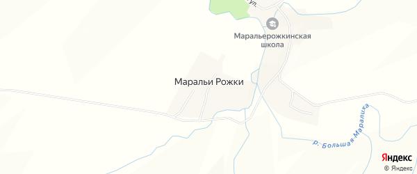 Карта села Маральи Рожки в Алтайском крае с улицами и номерами домов