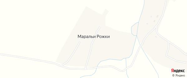 Луговая улица на карте села Маральи Рожки с номерами домов