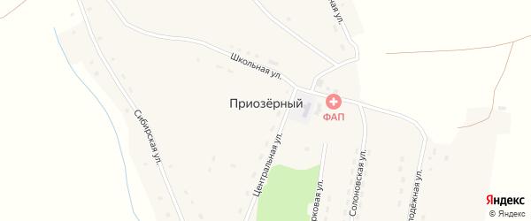 Луговая улица на карте Приозерного поселка с номерами домов