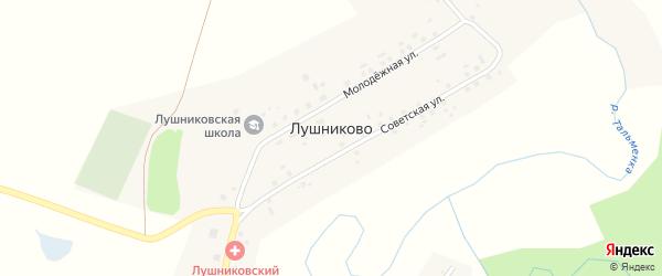 Советская улица на карте села Лушниково с номерами домов
