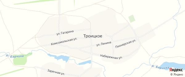 Карта Троицкого села в Алтайском крае с улицами и номерами домов