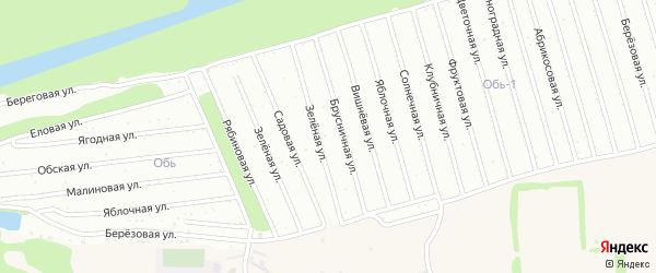 Фруктовая улица на карте садового некоммерческого товарищества Оби-1 с номерами домов