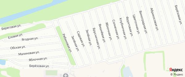 Ягодная улица на карте садового некоммерческого товарищества Оби-1 с номерами домов