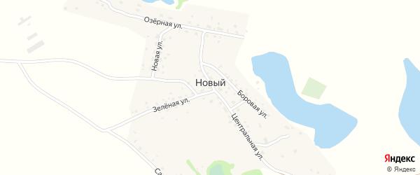 Центральная улица на карте Нового поселка с номерами домов
