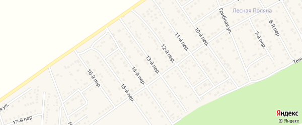 13-й переулок на карте Лесного поселка с номерами домов